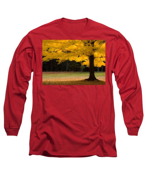 Tree Canopy Glowing In The Morning Sun Long Sleeve T-Shirt
