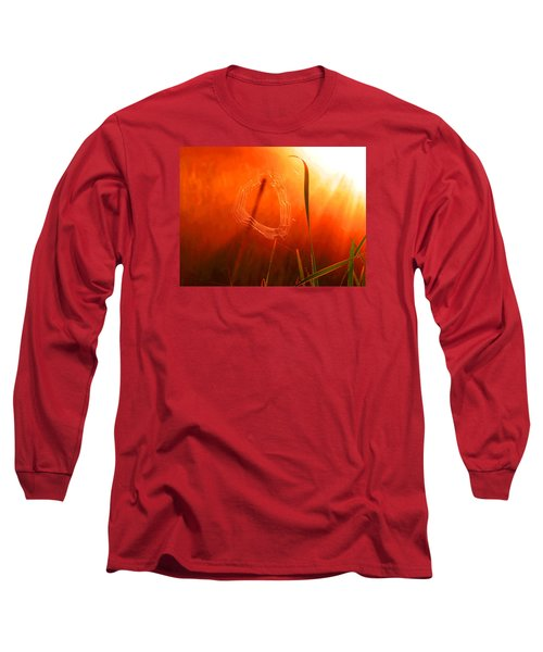 The Spider's Web In Golden Sunlight Long Sleeve T-Shirt