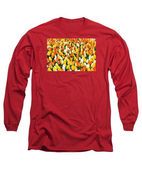 White Orange And Yellow Tulips Long Sleeve T-Shirt by Menachem Ganon
