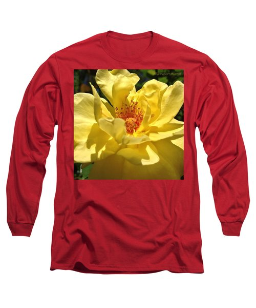 Yellow Monday Rose Long Sleeve T-Shirt