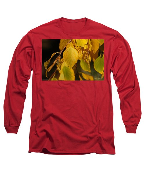 Autumn Birch In Southern Oregon Long Sleeve T-Shirt by Mick Anderson