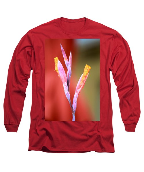 Cusp Of Emergence Long Sleeve T-Shirt