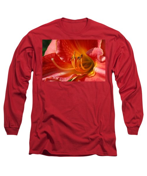 Daylilly Close Up Long Sleeve T-Shirt by Randy J Heath