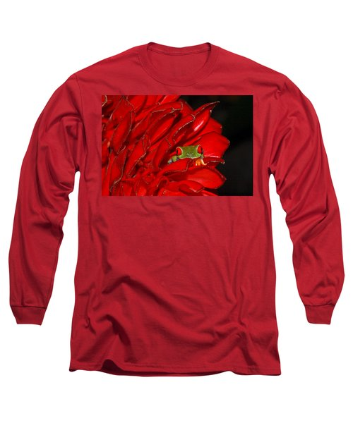 Hiding Long Sleeve T-Shirt