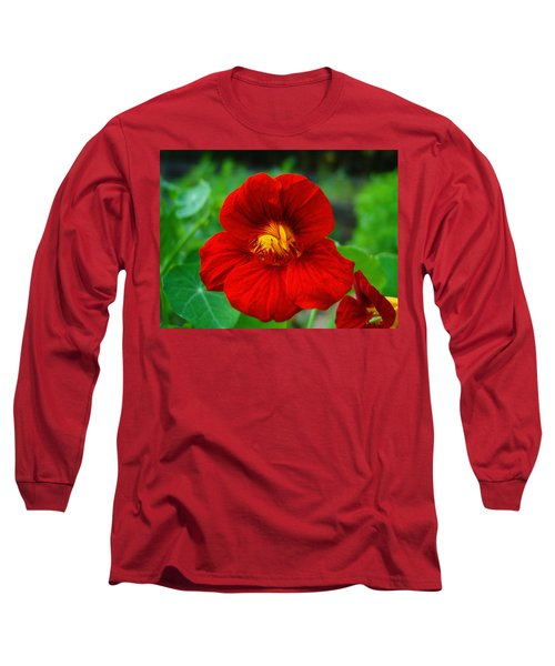 Red Daylily Long Sleeve T-Shirt by Bill Barber