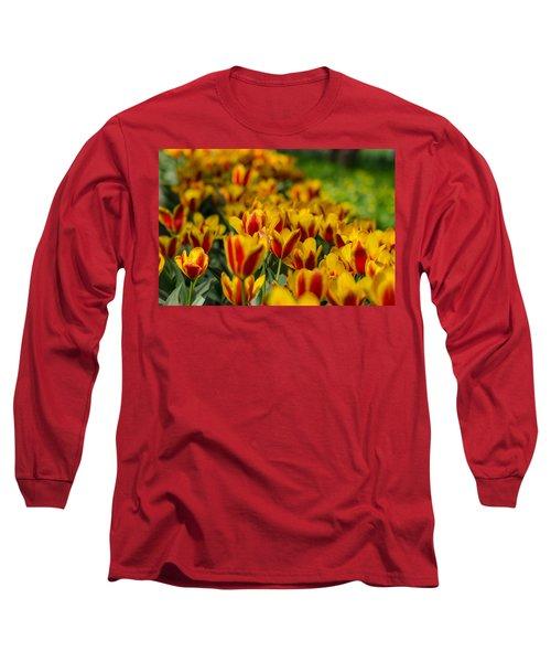 Spring Mood Long Sleeve T-Shirt