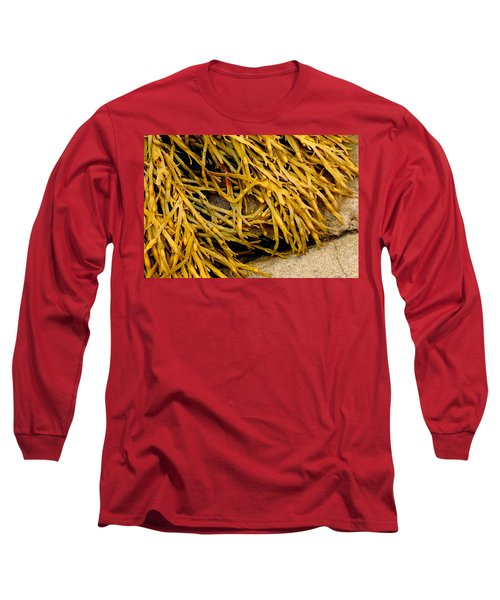 Yellow Kelp Long Sleeve T-Shirt by Brent L Ander