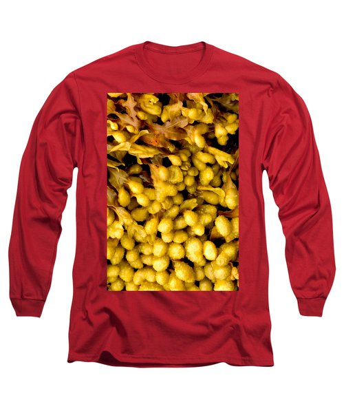 Yellow Kelp Pods Long Sleeve T-Shirt by Brent L Ander