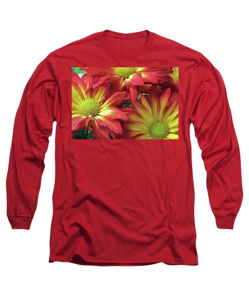 Long Sleeve T-Shirt featuring the photograph Beautiful Trio by Allen Beatty