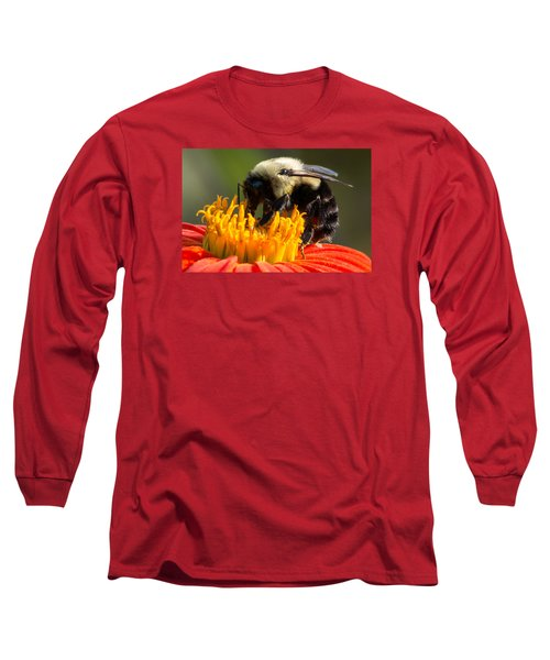 Bumble Bee Long Sleeve T-Shirt