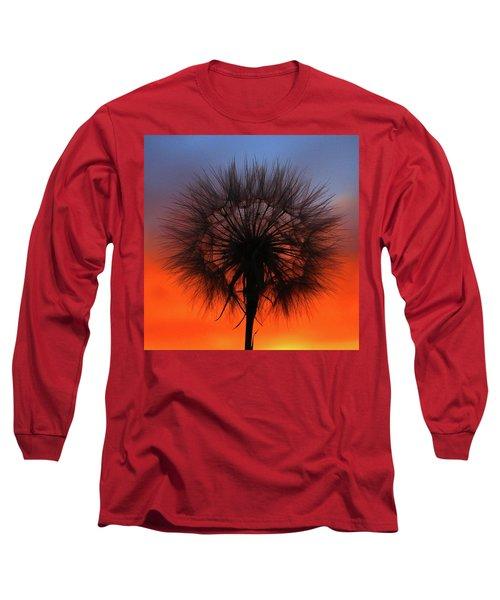 Dandelion Long Sleeve T-Shirt by Paul Marto