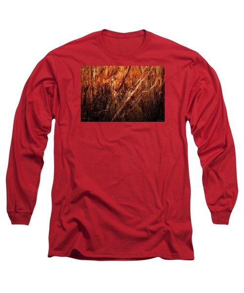 Light And Shadow Long Sleeve T-Shirt by Rick Furmanek