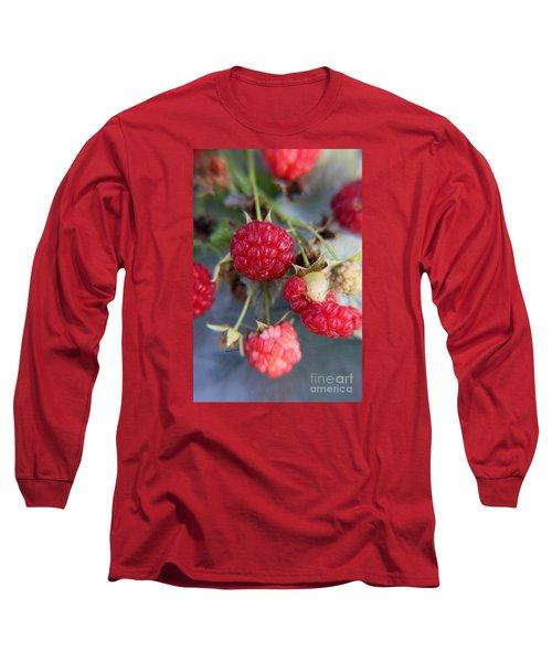 Red Raspberry  Long Sleeve T-Shirt by Yumi Johnson