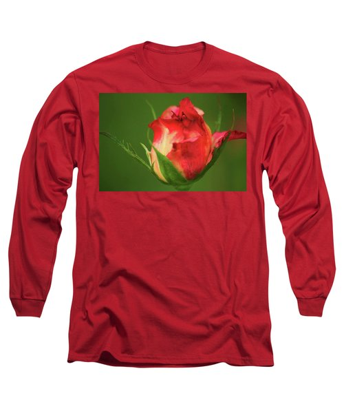 Rosebud Long Sleeve T-Shirt by Donna G Smith