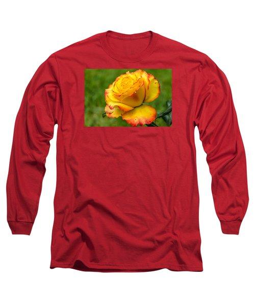 Two Toned Rose  Long Sleeve T-Shirt by Martina Fagan
