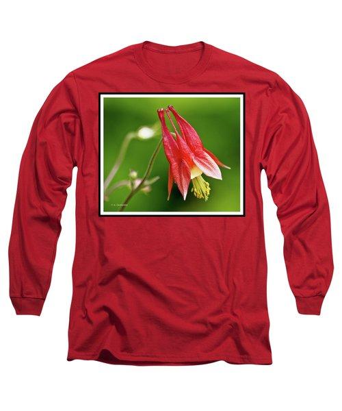 Wild Columbine Flower Long Sleeve T-Shirt