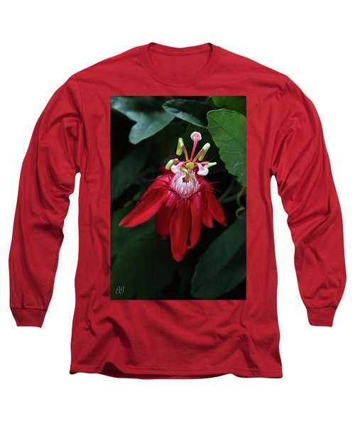 With Passion Long Sleeve T-Shirt by Geri Glavis
