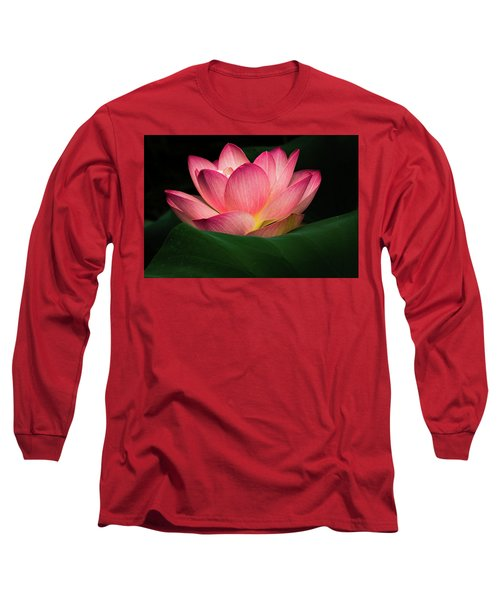 Water Lily Long Sleeve T-Shirt by Jay Stockhaus