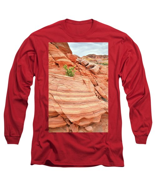 Long Sleeve T-Shirt featuring the photograph Colorful Wash In Valley Of Fire by Ray Mathis