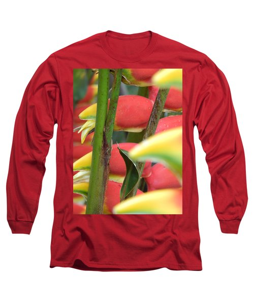 Long Sleeve T-Shirt featuring the photograph Natural  by Beto Machado