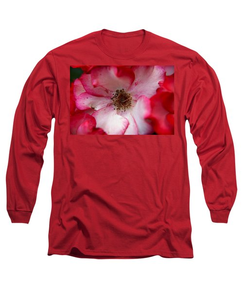 A Bee's Heaven Long Sleeve T-Shirt