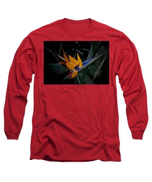 A Bright Blooming Bird Long Sleeve T-Shirt by Tim Good
