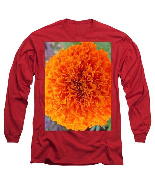A Burst Of Orange Long Sleeve T-Shirt