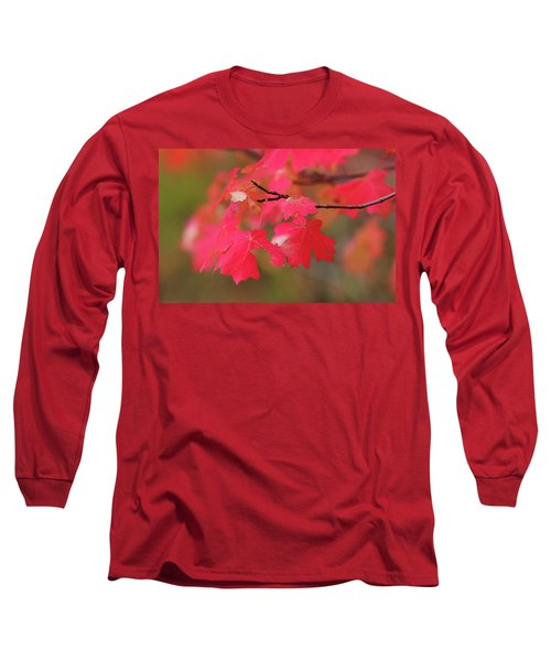 A Flash Of Autumn Long Sleeve T-Shirt