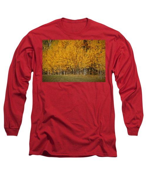 A Stand Of Aspen Long Sleeve T-Shirt