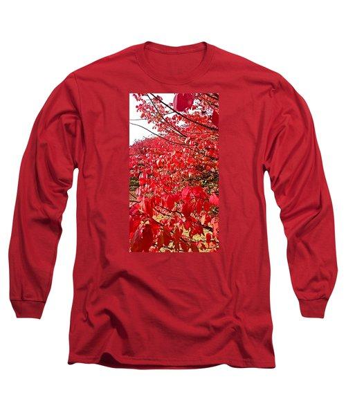 Ablaze Long Sleeve T-Shirt by Jana E Provenzano