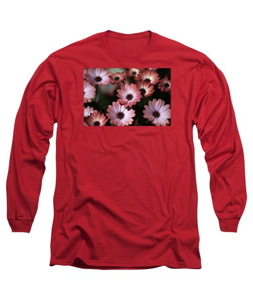African Daisy Zion Red Long Sleeve T-Shirt by Joy Watson