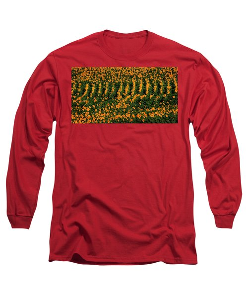Long Sleeve T-Shirt featuring the photograph All In A Row by Chris Berry