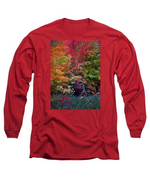 Along M37 In Autumn 2014 Long Sleeve T-Shirt