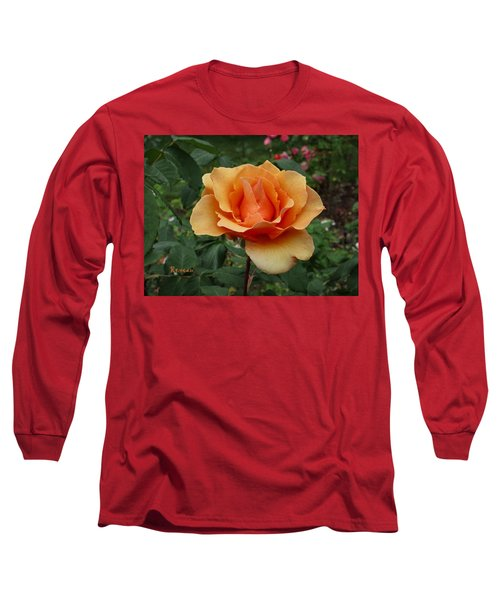 Apricot Rose Long Sleeve T-Shirt by Sadie Reneau