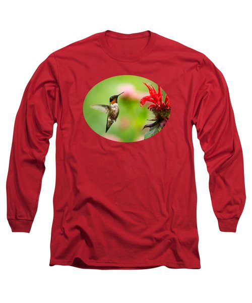 Male Ruby-throated Hummingbird Hovering Near Flowers Long Sleeve T-Shirt by Christina Rollo