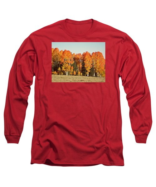 Aspen Forest In Autumn Long Sleeve T-Shirt