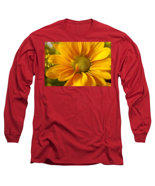 Aster Close Up Long Sleeve T-Shirt by Andrew Soundarajan