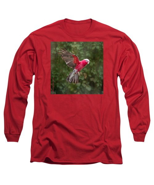 Australian Galah Parrot In Flight Long Sleeve T-Shirt