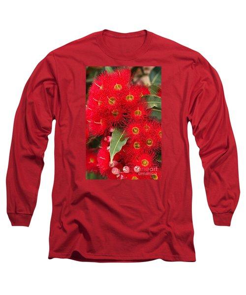 Australian Red Eucalyptus Flowers Long Sleeve T-Shirt by Joy Watson