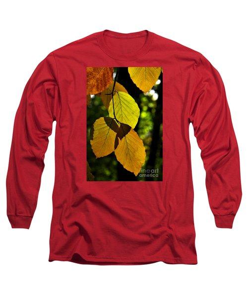 Autumn Beech Tree Leaves Long Sleeve T-Shirt