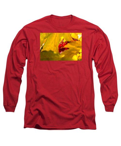Long Sleeve T-Shirt featuring the photograph Autumn Fruits - Viburnum Berries by Alexander Senin