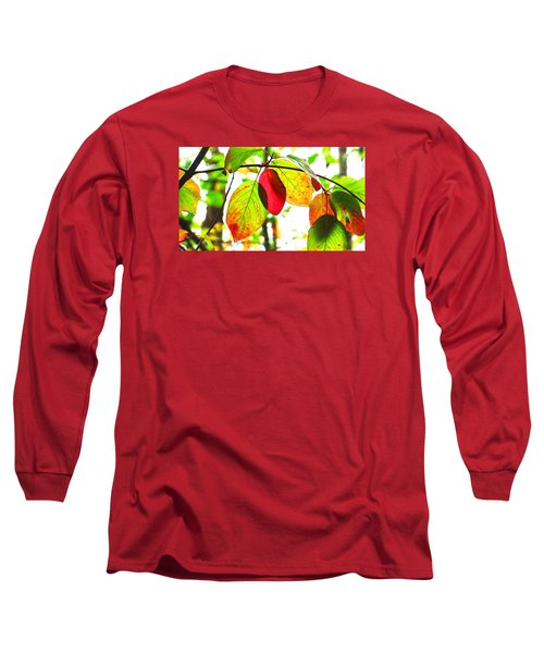 Autumn Leaves At Lake Padden Long Sleeve T-Shirt by Karen Molenaar Terrell