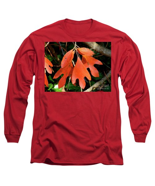Autumn Sassafras Leaves Long Sleeve T-Shirt