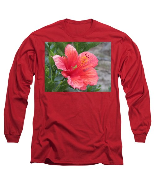Long Sleeve T-Shirt featuring the photograph Baby Grasshopper On Hibiscus Flower by Nancy Nale