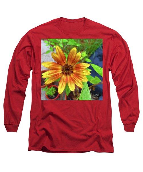 Baby Sunflower Grace Long Sleeve T-Shirt