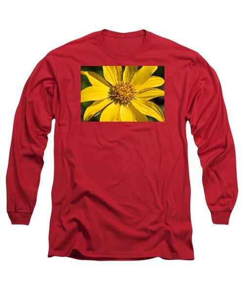 Balsamroot 2 Long Sleeve T-Shirt