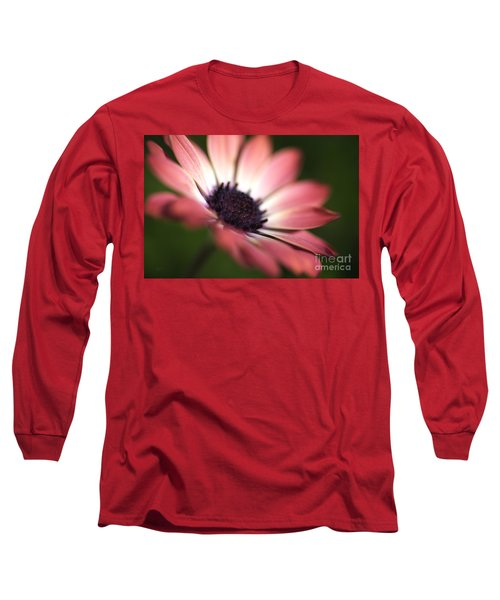 Beautiful Rich African Daisy Zion Red Flower Long Sleeve T-Shirt