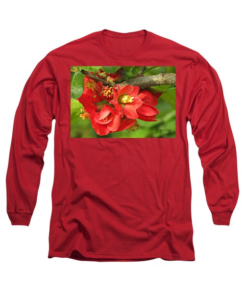 Beauty In The Branche Long Sleeve T-Shirt