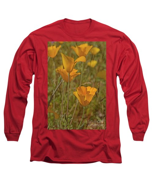Beauty Surrounds Us Long Sleeve T-Shirt