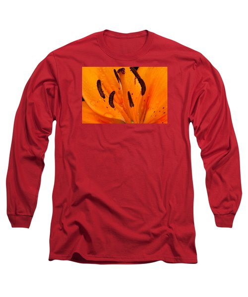 Bedraggled Beauty In Orange Long Sleeve T-Shirt
